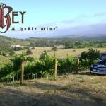 5 El Rey Wine