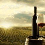 1 El Rey Wine